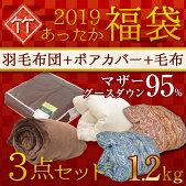 福袋2019竹セット