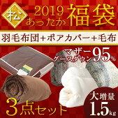 福袋2019松セット