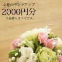 【単品購入不可】おまかせアレンジメント・花束用お花のご予算を2000円分ランクアップにてご利用いただけます。単品ではご利用いただけません。季節のお任せアレンジメント・花束、御供アレンジメント・花束以外の商品はご利用不可です。