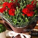 母の日 花 カーネーション 鉢花 2019 送料無料 お母さんありがとう!赤・ピンク色から選べるカーネーション5号鉢 フラワーギフト 母の…