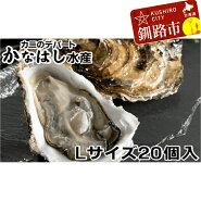 【ふるさと納税】超特大】釧路管内産活牡蠣(Lサイズ)20個入