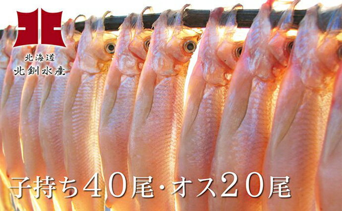 Ho201-C002【ふるさと納税】ししゃも釧路産(メス40尾・オス20尾)