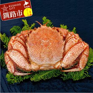 【ふるさと納税】毛がに 1尾 Ta603-I003 ふるさと納税 かに 蟹
