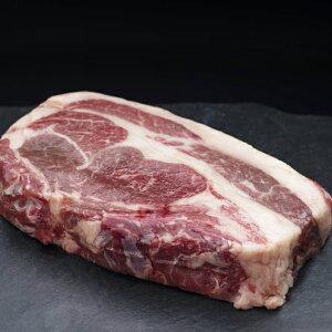 【ふるさと納税】釧路産馬肉ブロック(ロース)300g Ta501-P122