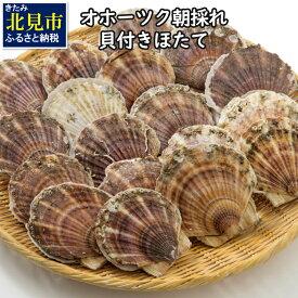 【ふるさと納税】◆2021年6月より発送◆オホーツク朝採れ貝付きほたて 4kg (25枚〜40枚)