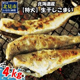 【ふるさと納税】北海道産【特大】生干しこまい(1kg×4箱)