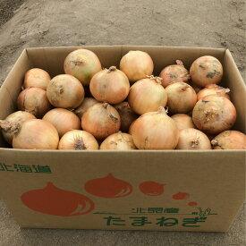 【ふるさと納税】【A-062】北海道北見産 玉ねぎ 20kg