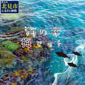【ふるさと納税】【B-120】組み合わせ自由!海の幸バラエティ「梅」セット