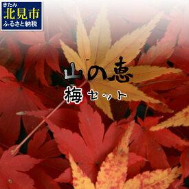 【ふるさと納税】【C-066】組み合わせ自由!山の恵バラエティ「梅」セット