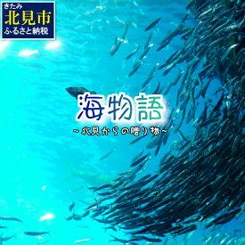 【ふるさと納税】【C-067】海物語〜北見からの贈り物〜【3ヶ月定期便】