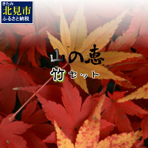 【ふるさと納税】【D-006】組み合わせ自由!山の恵バラエティ「竹」セット