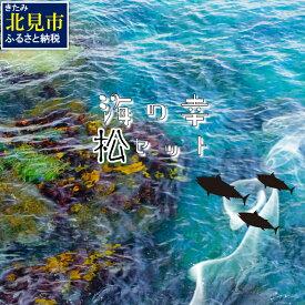 【ふるさと納税】【E-036】組み合わせ自由!海の幸バラエティ「松」セット