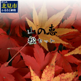 【ふるさと納税】【E-037】組み合わせ自由!山の恵バラエティ「松」セット