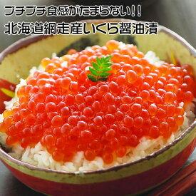 【ふるさと納税】北海道 網走産 冷凍いくら醤油漬 500g
