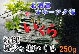 【ふるさと納税】【新物!】塩いくら250g