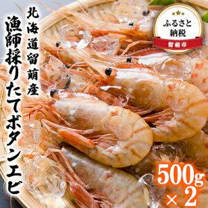 【ふるさと納税】北海道留萌産 漁師採りたてボタンエビ500g×2 【海老・ぼたんエビ・魚介・海鮮・えび】