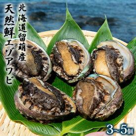 【ふるさと納税】日時指定不可【産地直送】北海道留萌産天然鮮エゾアワビ(大サイズ)3〜5個 【魚貝類・あわび・鮑】