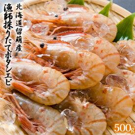 【ふるさと納税】北海道留萌産 漁師採りたてボタンエビ500g 【海老・ぼたんエビ】