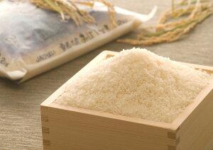 【ふるさと納税】雪蔵工房 幻の米 おぼろづき(10kg)【令和2年産】
