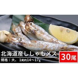 【ふるさと納税】北海道産ししゃもメス(30尾 規格:大)※1尾約14〜17g 【魚貝類・ししゃも・シシャモ】