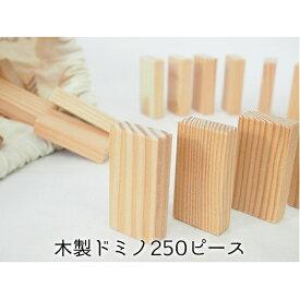 【ふるさと納税】こだわりの木材でつくる!木製ドミノ 250ピース 【工芸品・玩具】