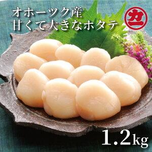 【ふるさと納税】13-11 オホーツク産大粒ホタテ(1.2kg)