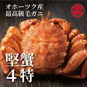 【ふるさと納税】27-2 オホーツク産【四特】毛ガニ800g