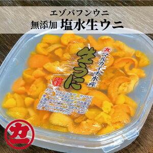 【ふるさと納税】10-183 エゾバフンウニ【塩水生ウニ100g】