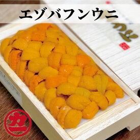 【ふるさと納税】10-184 エゾバフンウニ【折ウニ100g】