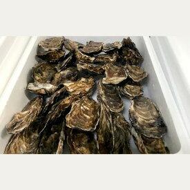 【ふるさと納税】10-248 生牡蠣 大〜特大サイズ 約2.8kg(20〜25個入)