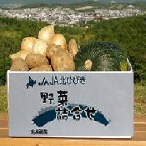 【ふるさと納税】A109 野菜詰め合わせセット【南瓜2玉、馬鈴薯約3kg、玉葱約4kg】