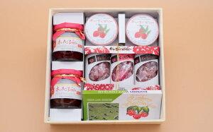 【ふるさと納税】A406 木いちご農園(木いちご製品詰合)【ジャム、チョコ、ゼリー、キャンディー】