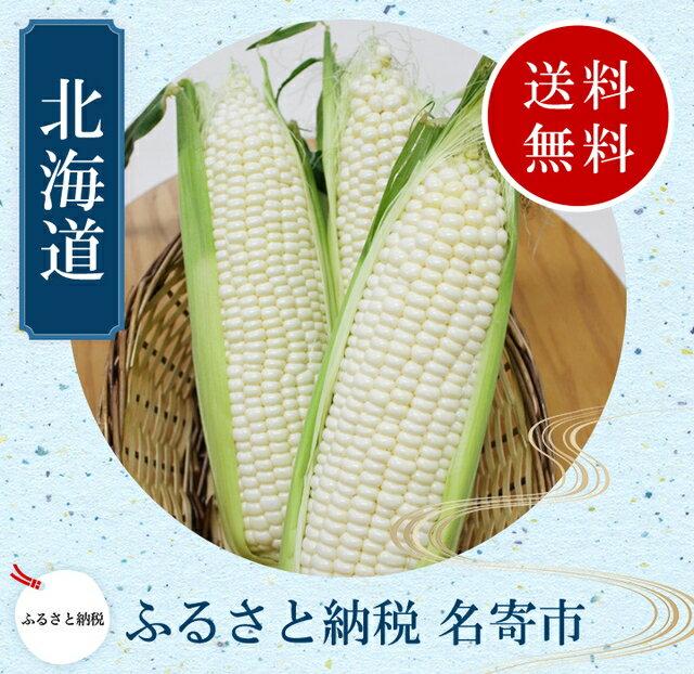 【ふるさと納税】北海道名寄産ホワイトコーン L〜2Lサイズ11本