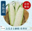 【ふるさと納税】北海道名寄産ホワイトコーン Lサイズ11本