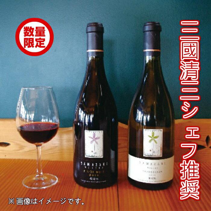 【ふるさと納税】《逸品》山崎ワイン(赤)1本