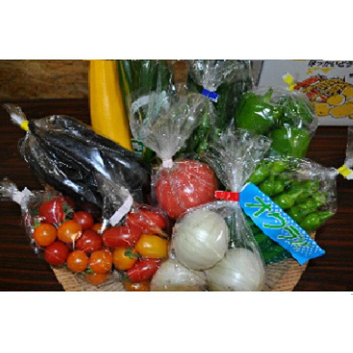 【ふるさと納税】季節の野菜詰め合わせ(夏)