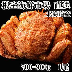 【ふるさと納税】毛がに700〜900g×1尾 B-11020