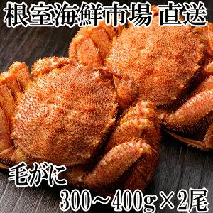 【ふるさと納税】浜ゆで毛がに300〜400g×2尾 B-11028