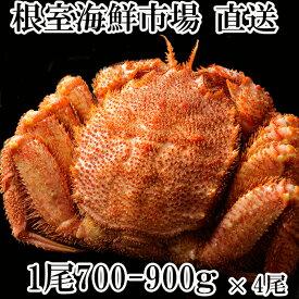 【ふるさと納税】【12月6日決済確定分まで年内配送】ボイル毛がに700〜900g×4尾 D-11003