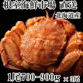 【ふるさと納税】ボイル毛がに700〜900g×3尾 D-11004