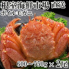 【ふるさと納税】 ボイル毛がに600〜750g×2尾 C-14005