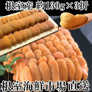 【ふるさと納税】[北海道根室産]エゾバフンウニ(赤系)約130g×3折[2021年1月下旬以降発送] C-14009