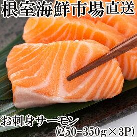 【ふるさと納税】根室海鮮市場<直送>お刺身サーモン250〜350g×3P A-28130