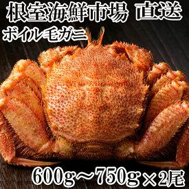 【ふるさと納税】 根室海鮮市場<直送>ボイル毛がに600〜750g×2尾 C-28005