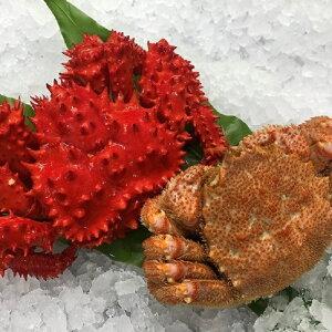 【ふるさと納税】 [北海道根室産]花咲ガニ500g前後×1尾、毛ガニ350g前後×1尾セット A-54004