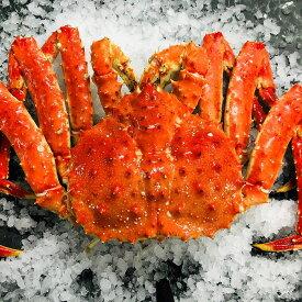 【ふるさと納税】[北海道根室産]ボイル冷凍たらば蟹姿3kg前後×1尾 D-54007