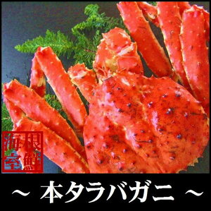 【ふるさと納税】本タラバガニ2kg前後×1尾 D-57005