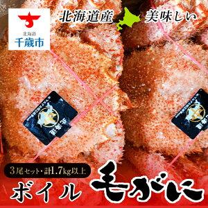 【ふるさと納税】北海道産美味しいボイル毛がに3尾1.7kg以上 毛がに 蟹【北海道千歳市】