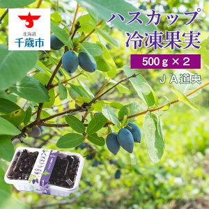 【ふるさと納税】 令和3年産 ハスカップ冷凍果実(500g×2)【北海道千歳市】