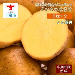 【ふるさと納税】 北海道千歳産じゃがいも インカのめざめ(5kg×2) 野菜 じゃがいも お届け:2020年10月上旬より順次出荷【北海道千歳市】